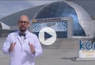 Bilim Bakalım-Jeneratörler