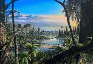 Antarktika'da 90 milyon yıl öncesine ait yağmur ormanı kalıntıları bulundu