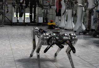 Dört ayaklı yerli robot, tehlikeli işlerin üstesinden gelecek