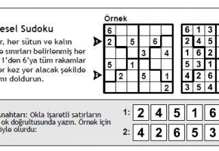 Bölgesel Sudoku Nasıl Çözülür?